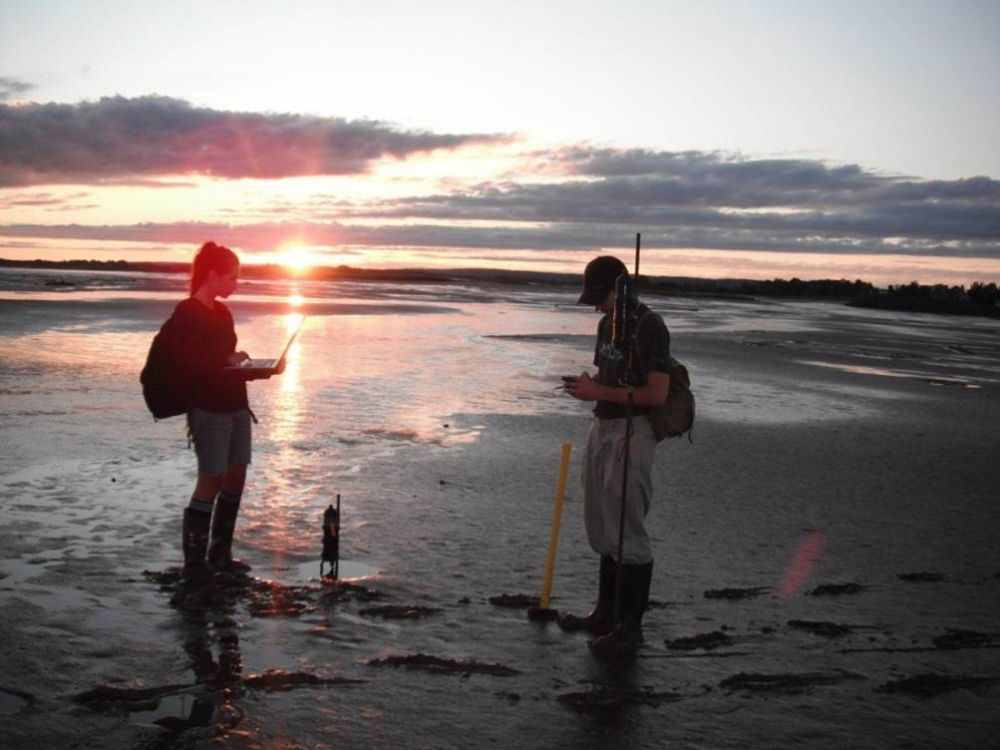 mudflat-sunset.jpg